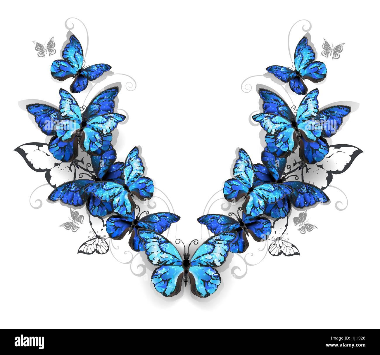 Schema Simmetrico Di Blu Realistici Morfid Farfalle Su Uno Sfondo