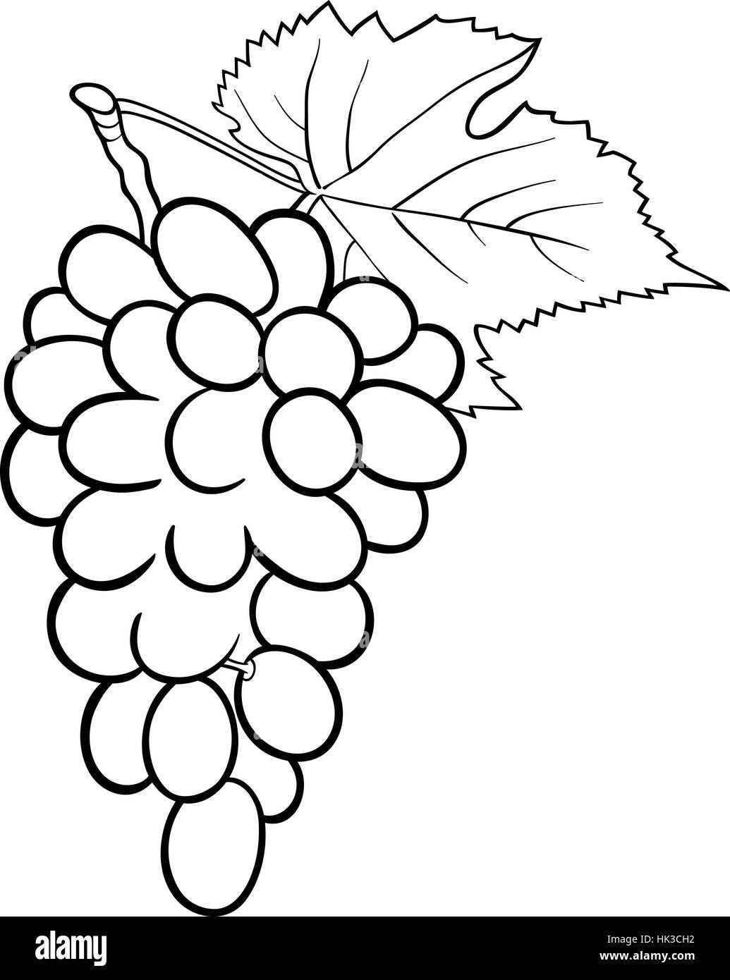 Bianco E Nero Cartoon Illustrazione Del Grappolo Di Uva O Grapevine Frutta Oggetto Alimentare Per Il Libro Da Colorare Foto Stock Alamy