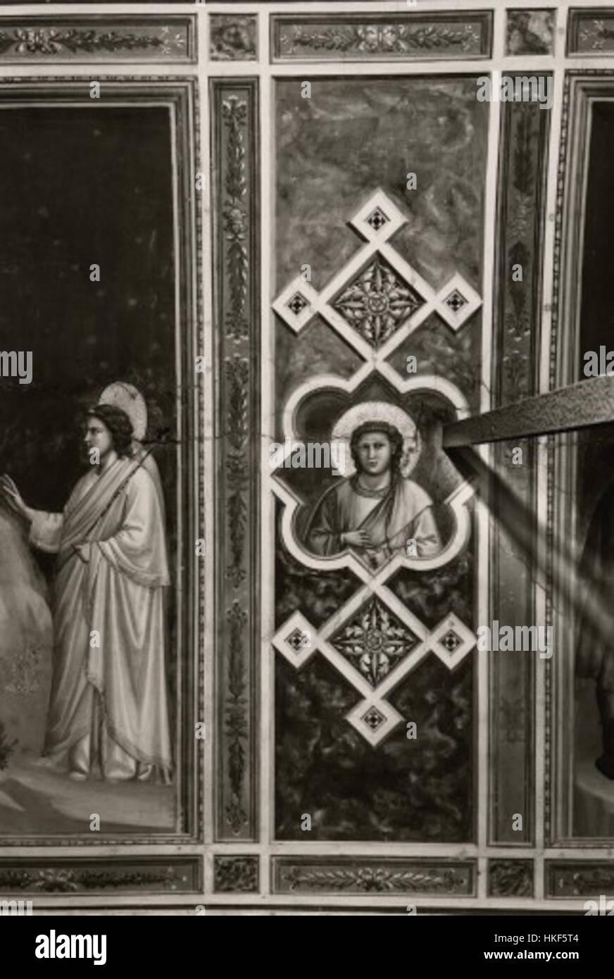 Giotto, motivo decorativo 15 Immagini Stock