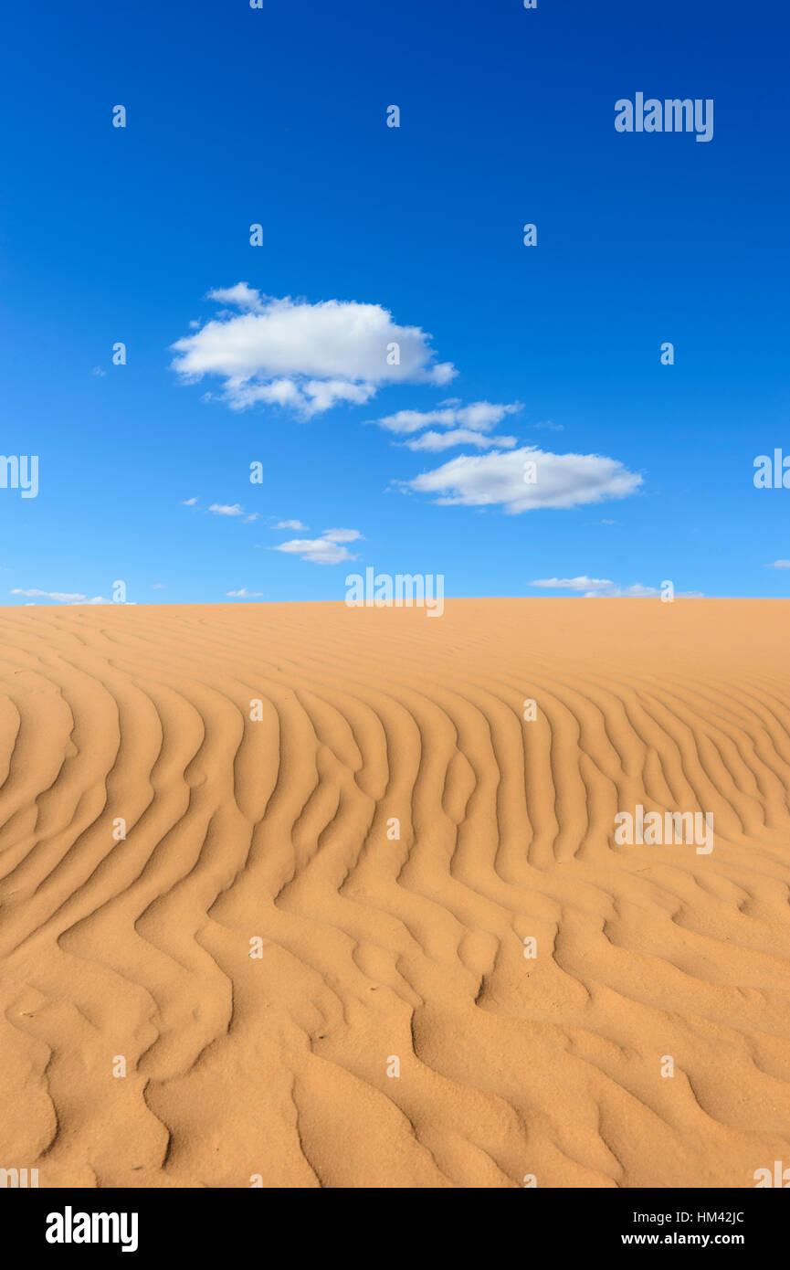 Modelli di sabbia a Perry Sandhills, nei pressi di Wentworth, Nuovo Galles del Sud, Australia Immagini Stock