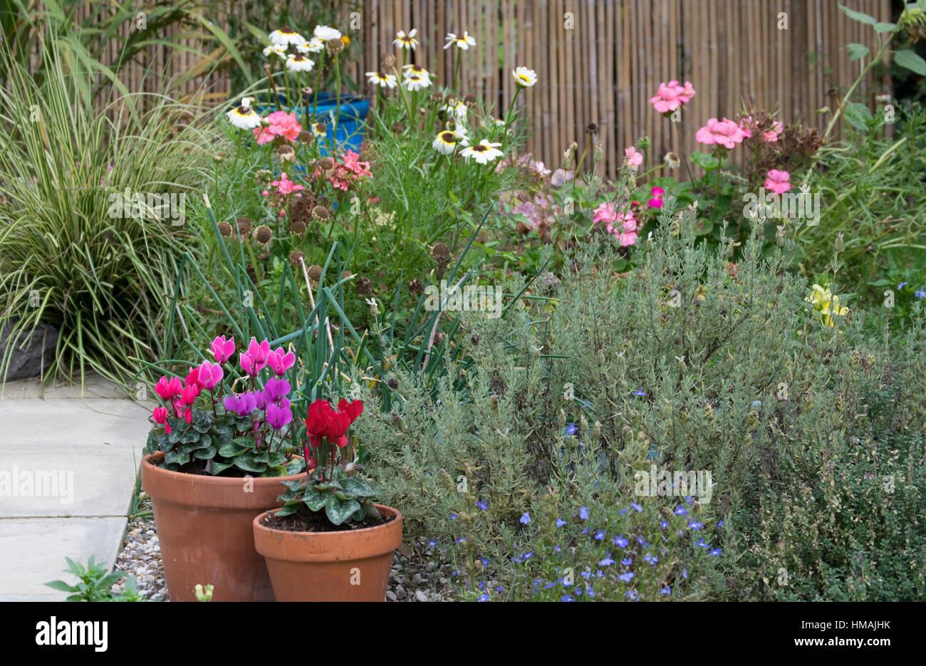 Letto di fiori e di confine Foto Stock