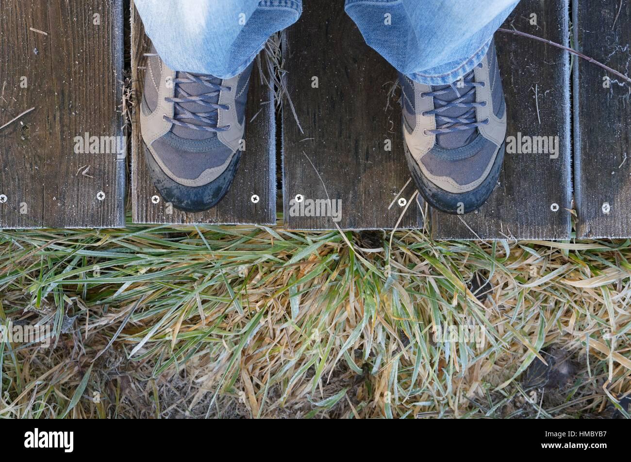 Vista verso il basso di scarponi a bordo a piedi ed erbe di Moro Immagini Stock