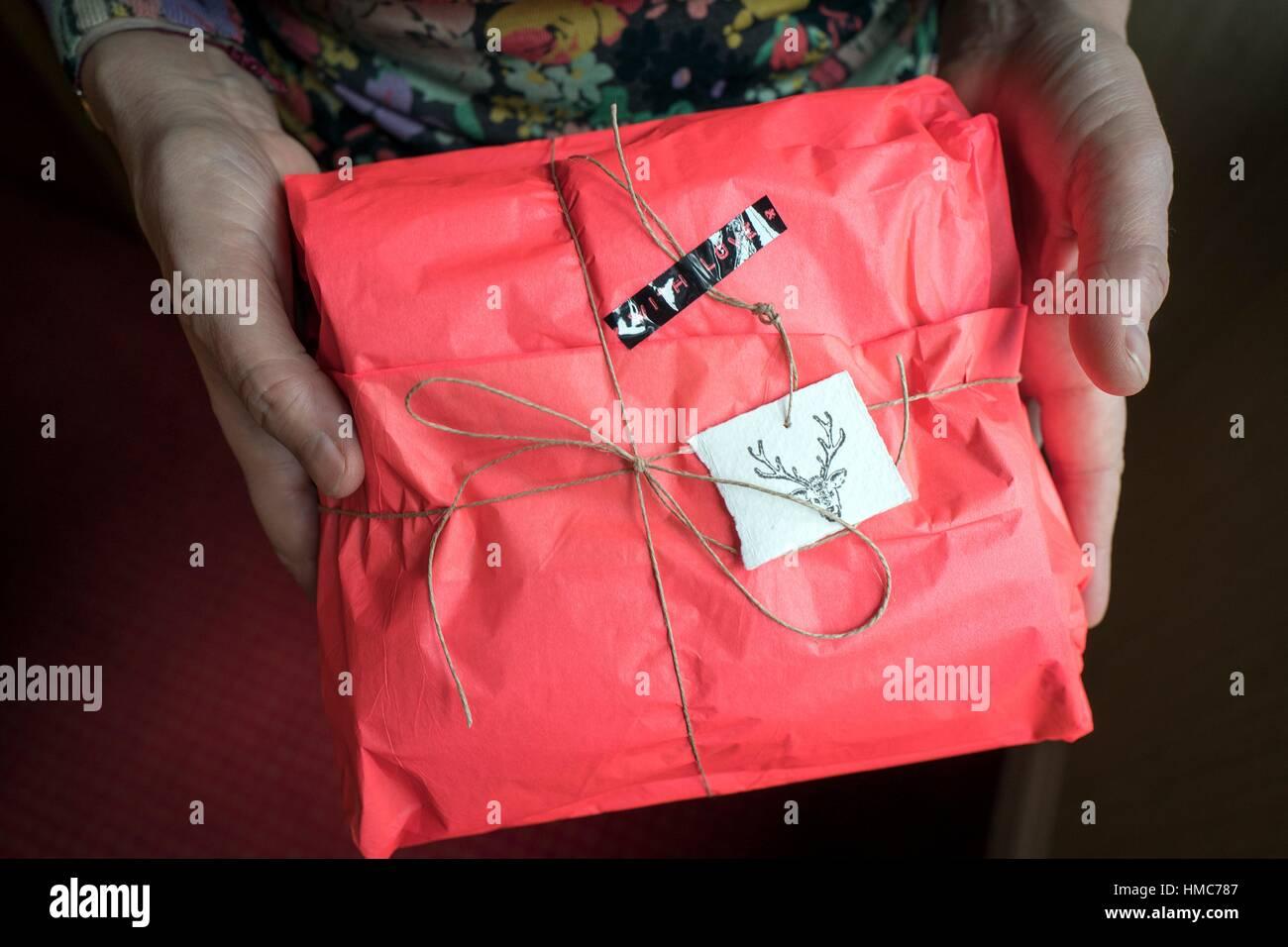 Donna mani un regalo di Natale in un pacchetto rosso con un etichetta di cervo Immagini Stock