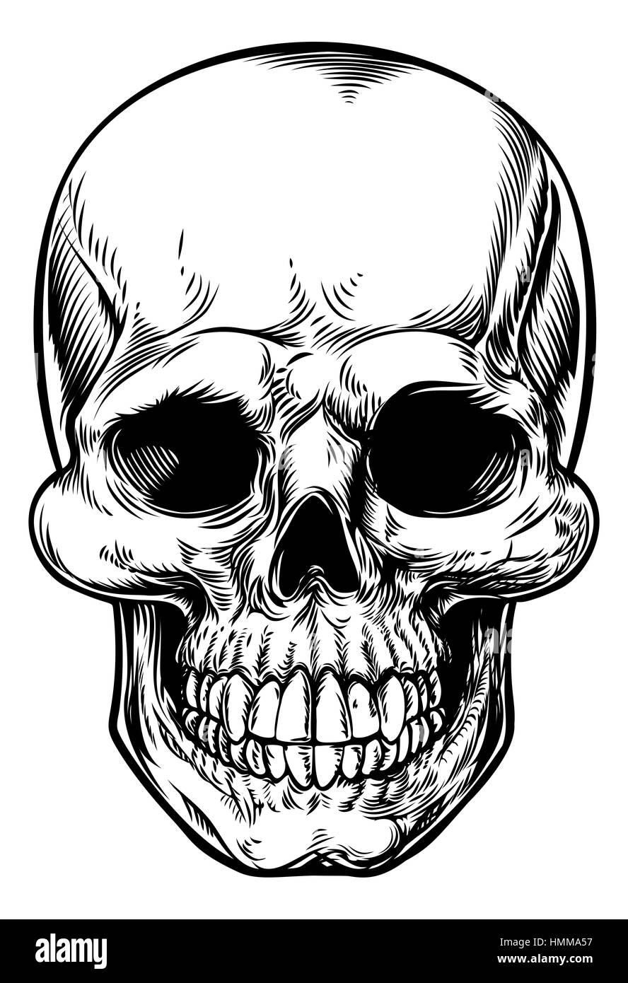 Disegno del cranio in un vintage retrò xilografia incisa o stile inciso  Immagini Stock 32ff150af593