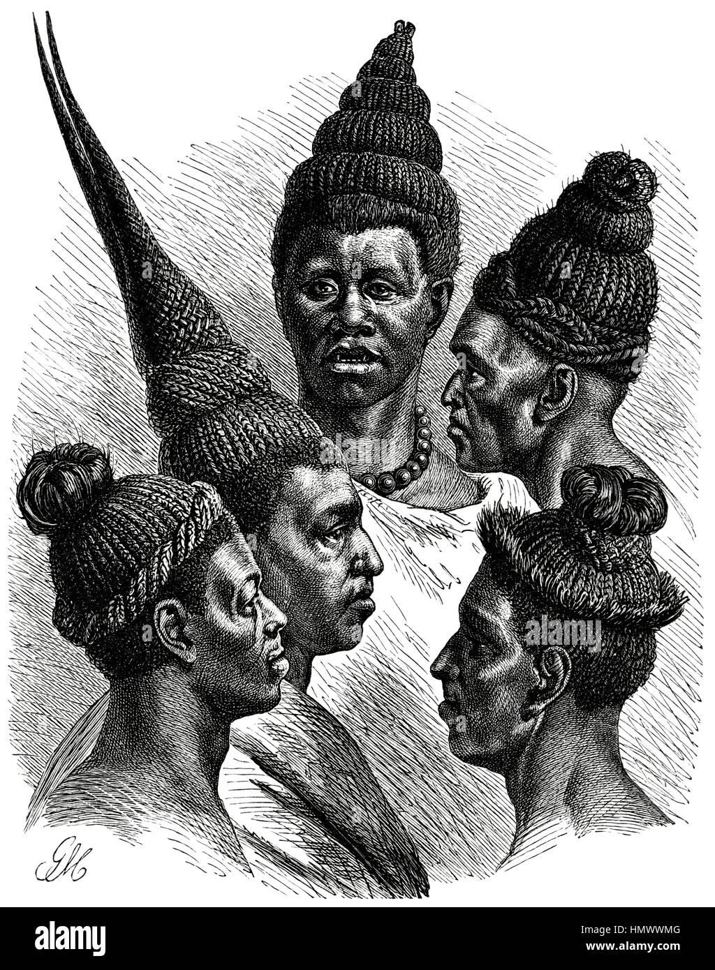 Capelli mode del Maschukulumbe, Sud Africa, illustrazione, 1885 Immagini Stock