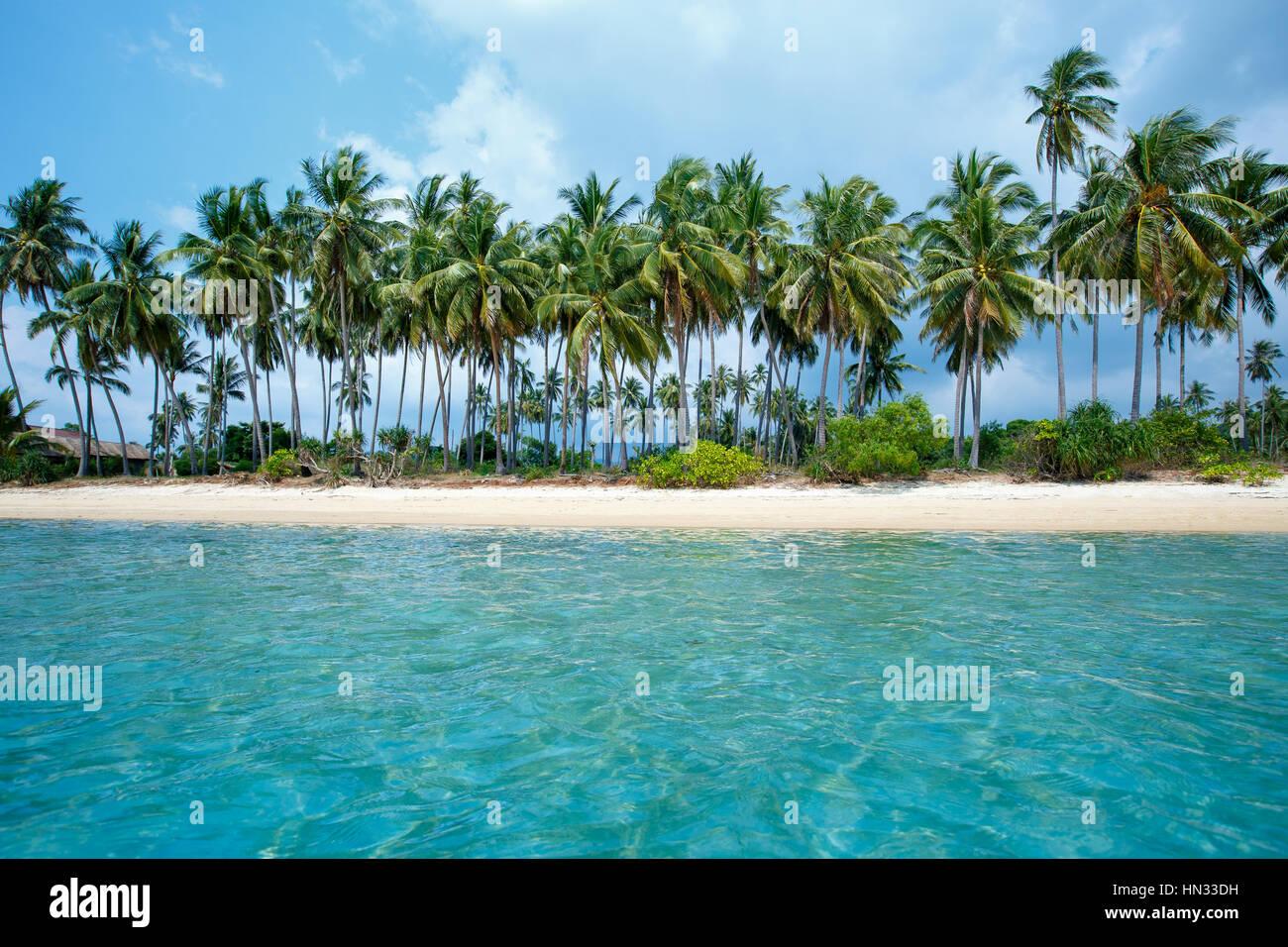 Spiaggia tropicale e palme da cocco in Koh Samui, Thailandia Immagini Stock