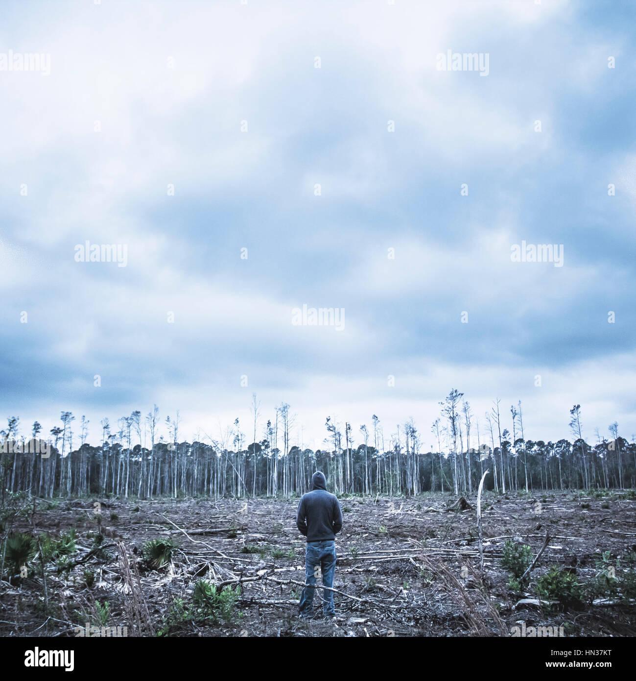 Uomo in piedi da solo tra una scena di deforestazione Immagini Stock