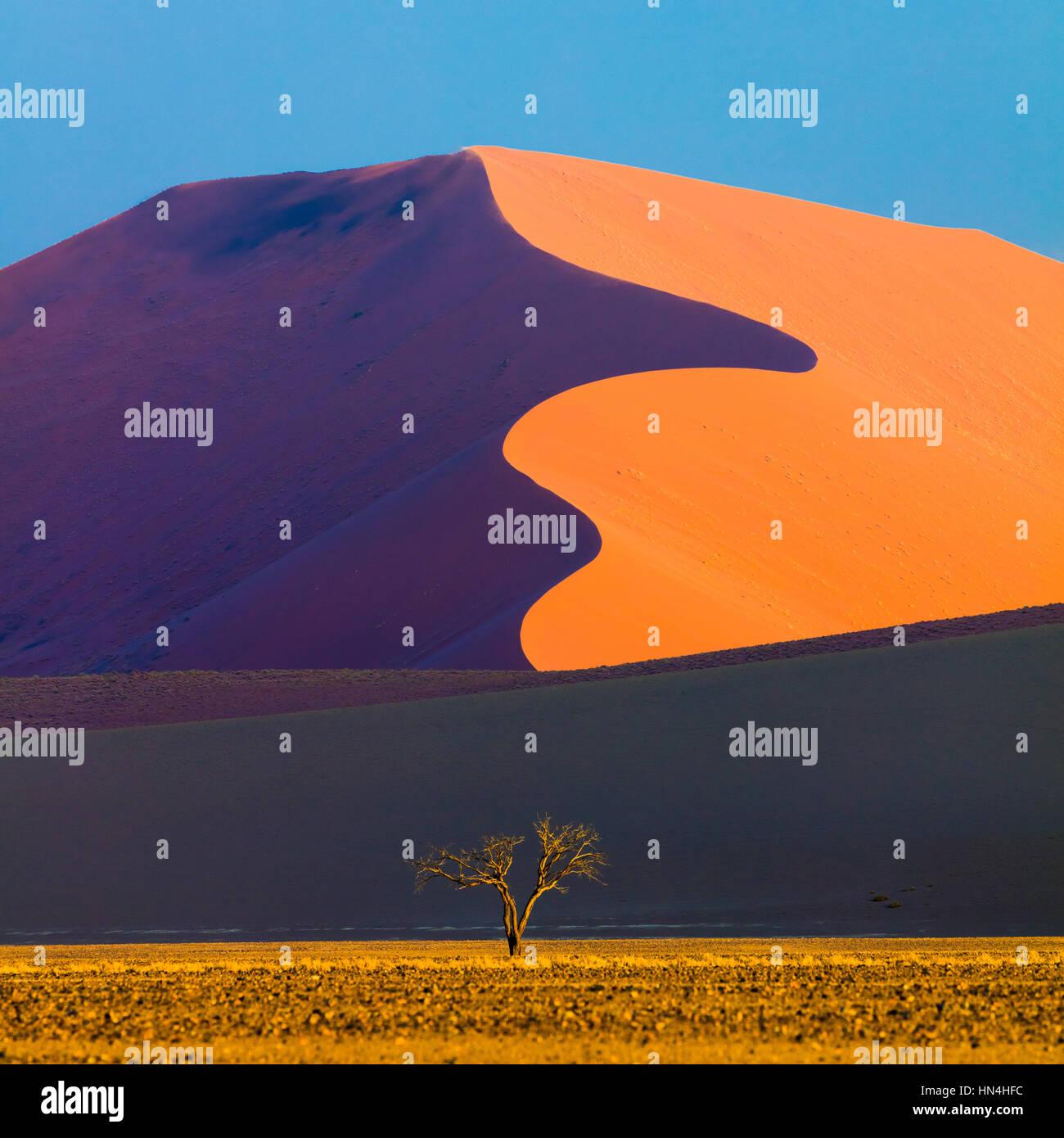 Sossusvlei è un sale e pan di argilla circondata da alte dune rosse, situata nella parte meridionale del deserto Immagini Stock