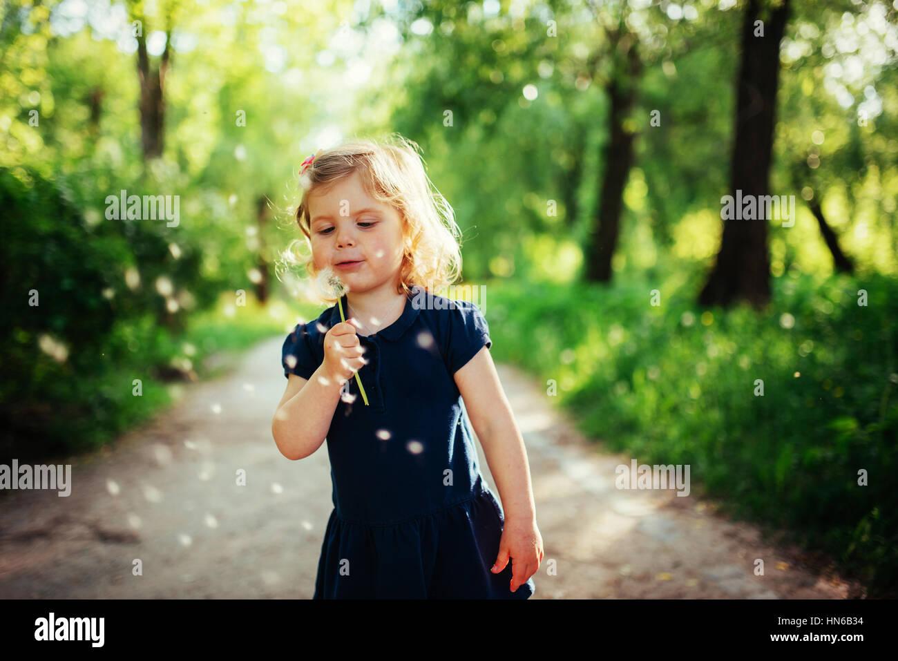 Bambino con tarassaco Immagini Stock