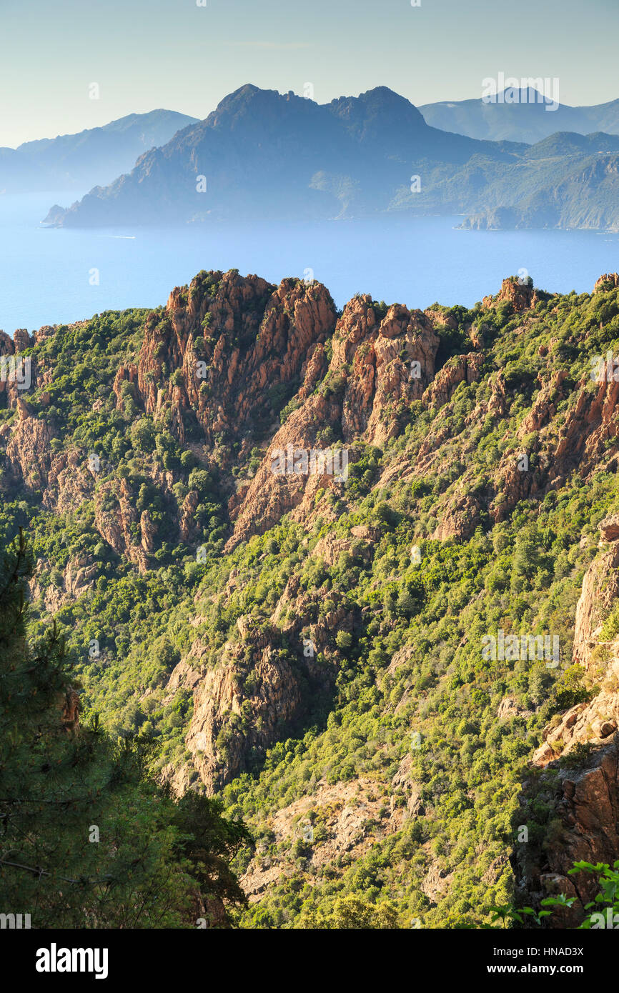 Il golfo di Porto guardando verso Scandola , Corsica, Francia Immagini Stock