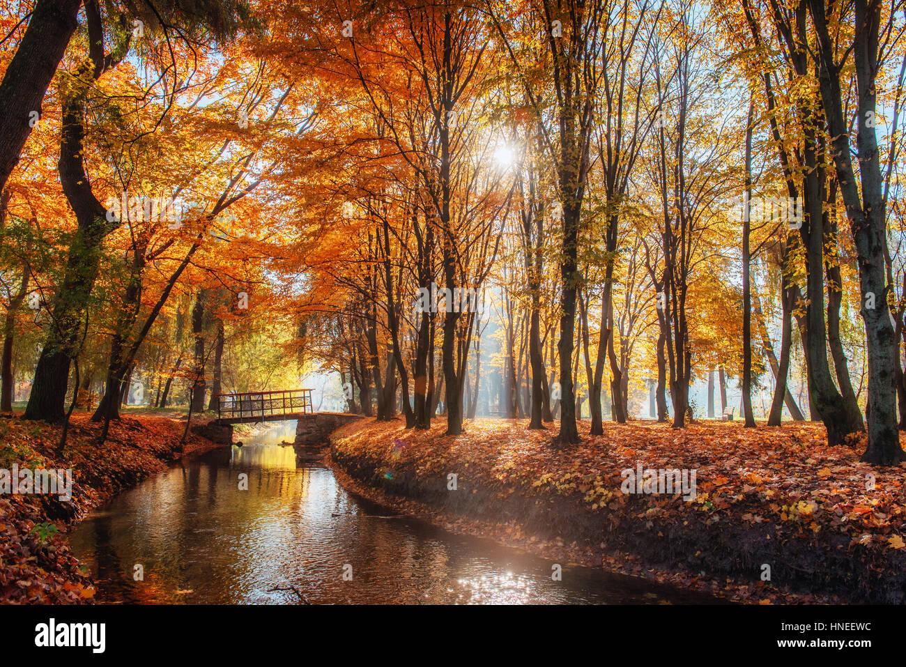 A piedi via ponte sul fiume con alberi colorati Immagini Stock