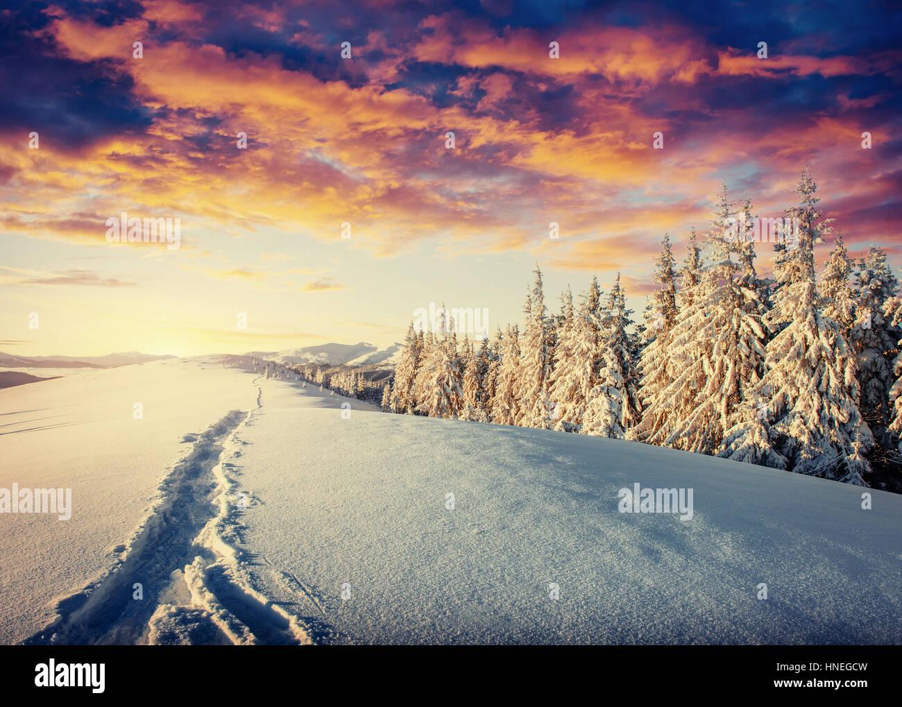 Strada d'inverno. Bel colore ad alta risoluzione di immagine con una vacanze Immagini Stock