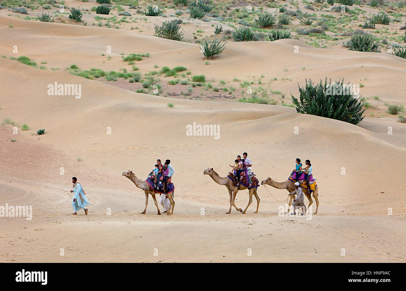 I turisti a cavallo di cammelli su Sam dune nel deserto parco nazionale nel Grande deserto di Thar,vicino a Jaisalmer, Immagini Stock