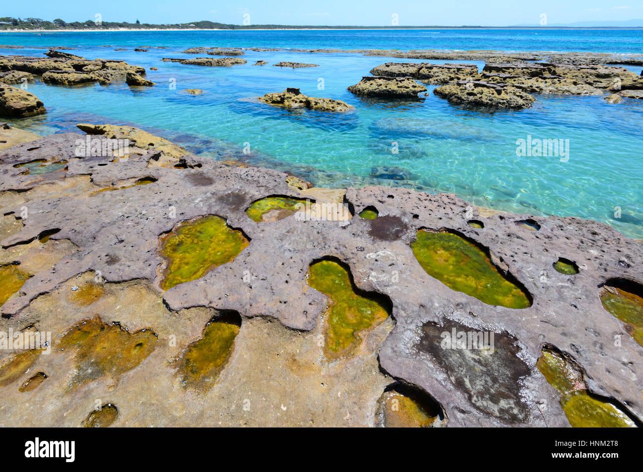 Arenaria incredibili formazioni rocciose presso la spiaggia panoramica di Currarong, area di Shoalhaven, Nuovo Galles Immagini Stock