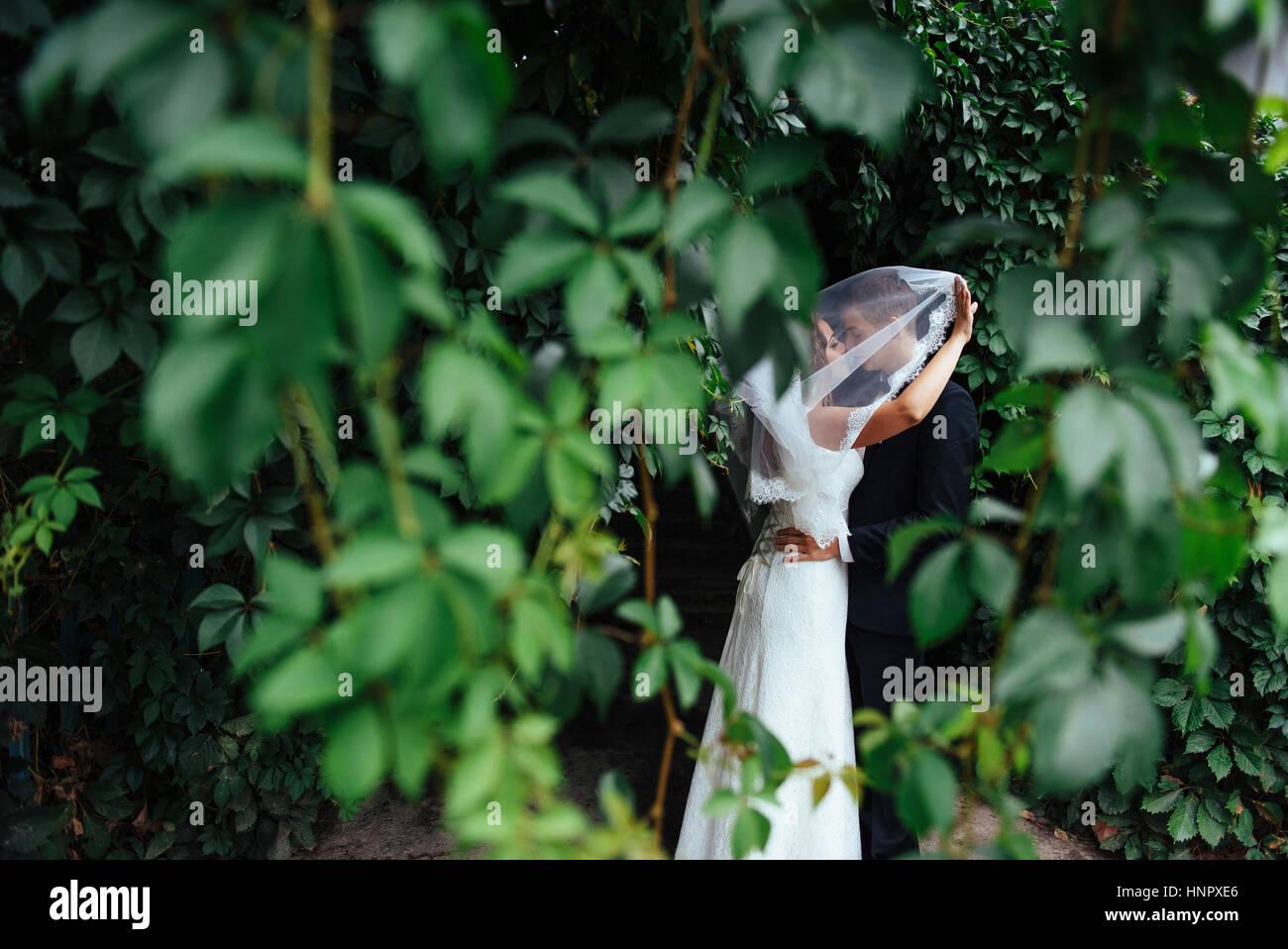 Bella giovani sposi kissing , biondo sposa con flowe Foto Stock