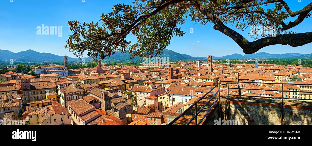 Panoramico roof top vista dalla Torre Guinigi del centro storico di Lucca, Toscana, Italia Immagini Stock
