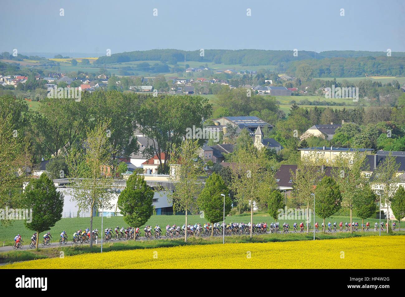 Belvaux, Lussemburgo 16.05.2012. Il pack in azione durante la Fleche du Sud corsa di ciclismo Immagini Stock