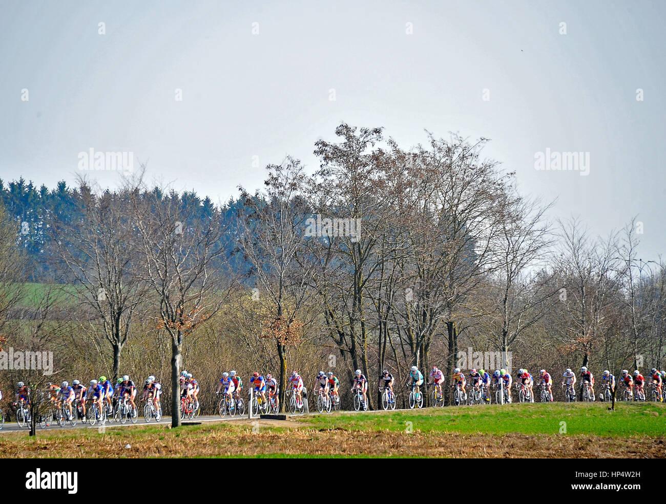 Dippach, Lussemburgo 25.03.2012. Il pack in azione durante il GRAN PREMIO DI AUTOPOLIS DIPPACH corsa di ciclismo Immagini Stock