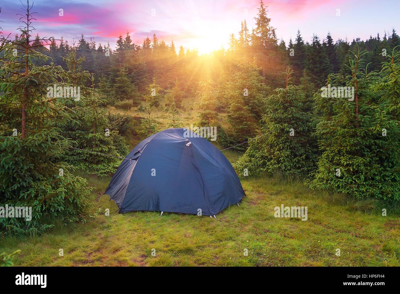 Tenda da campeggio nella foresta con il tramonto del sole