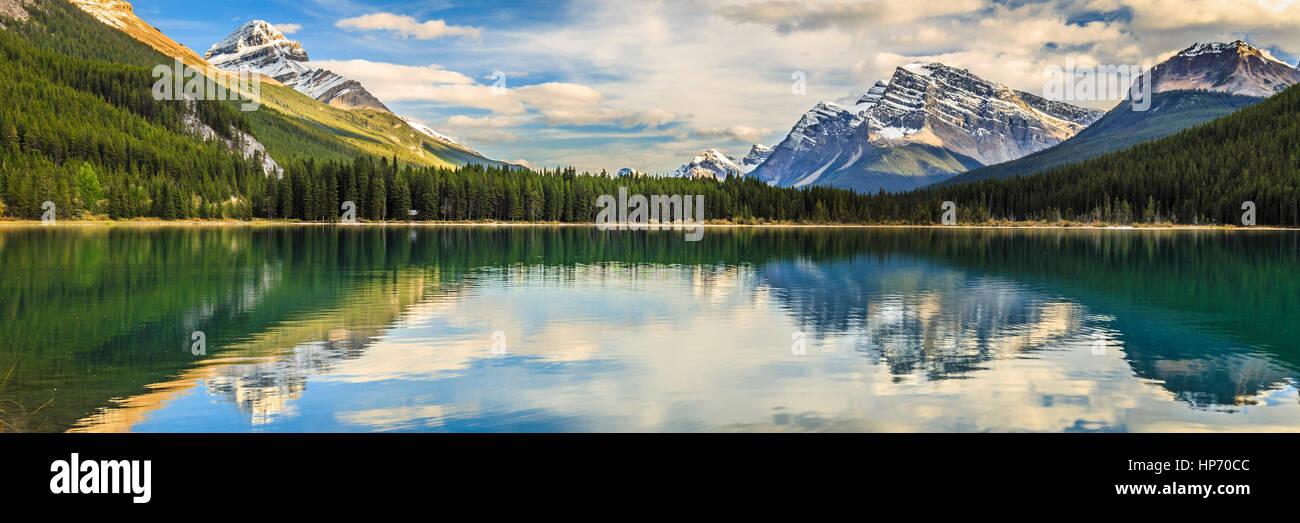 Lago di uccelli acquatici, Alberta, Canada Immagini Stock