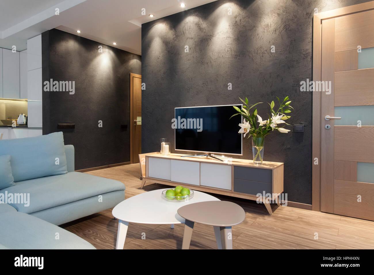 Arredamento Moderno Salotto : Arredamento moderno di un piccolo appartamento privato salotto