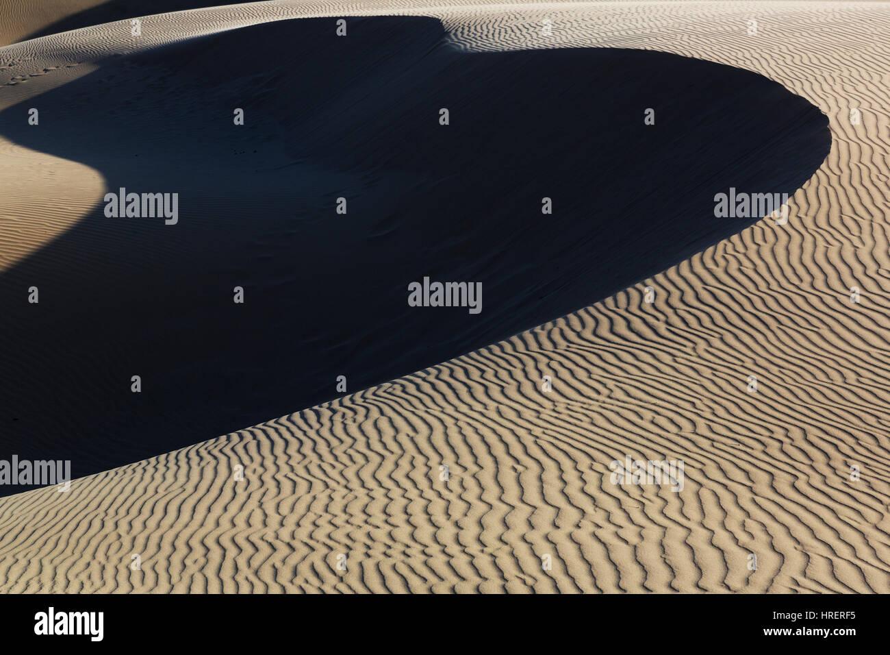 Oceano dune naturali preservare, California Immagini Stock