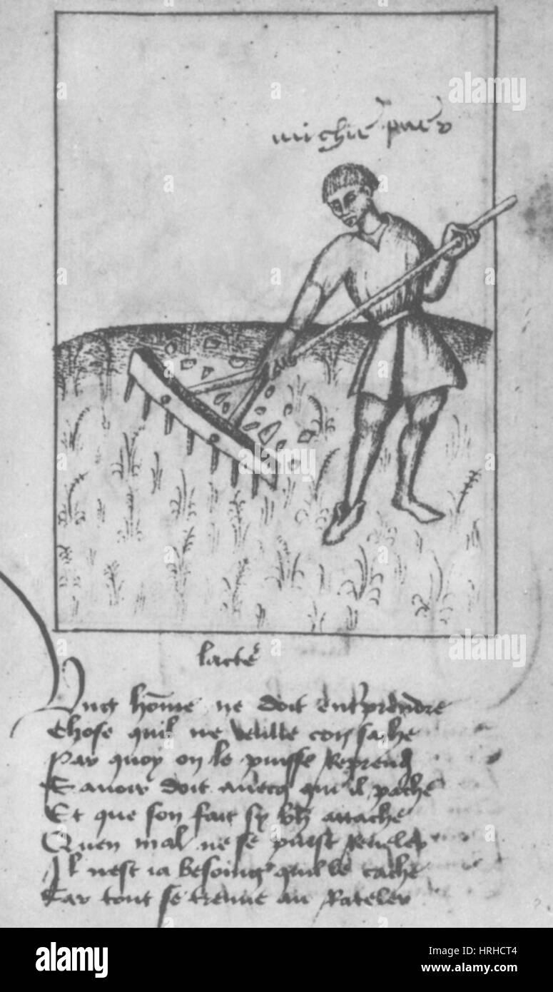 Agricoltura, XV secolo Immagini Stock
