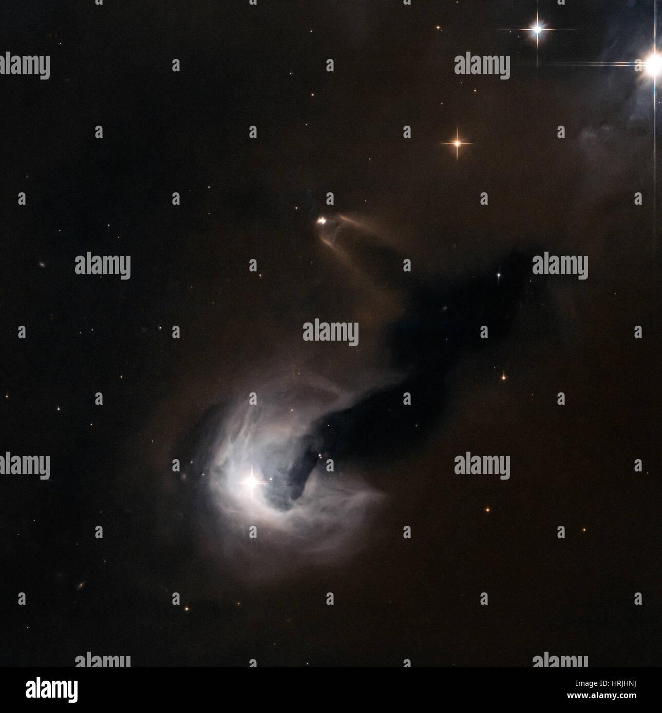 Stellare giovane oggetto e Nebulosa di riflessione Immagini Stock