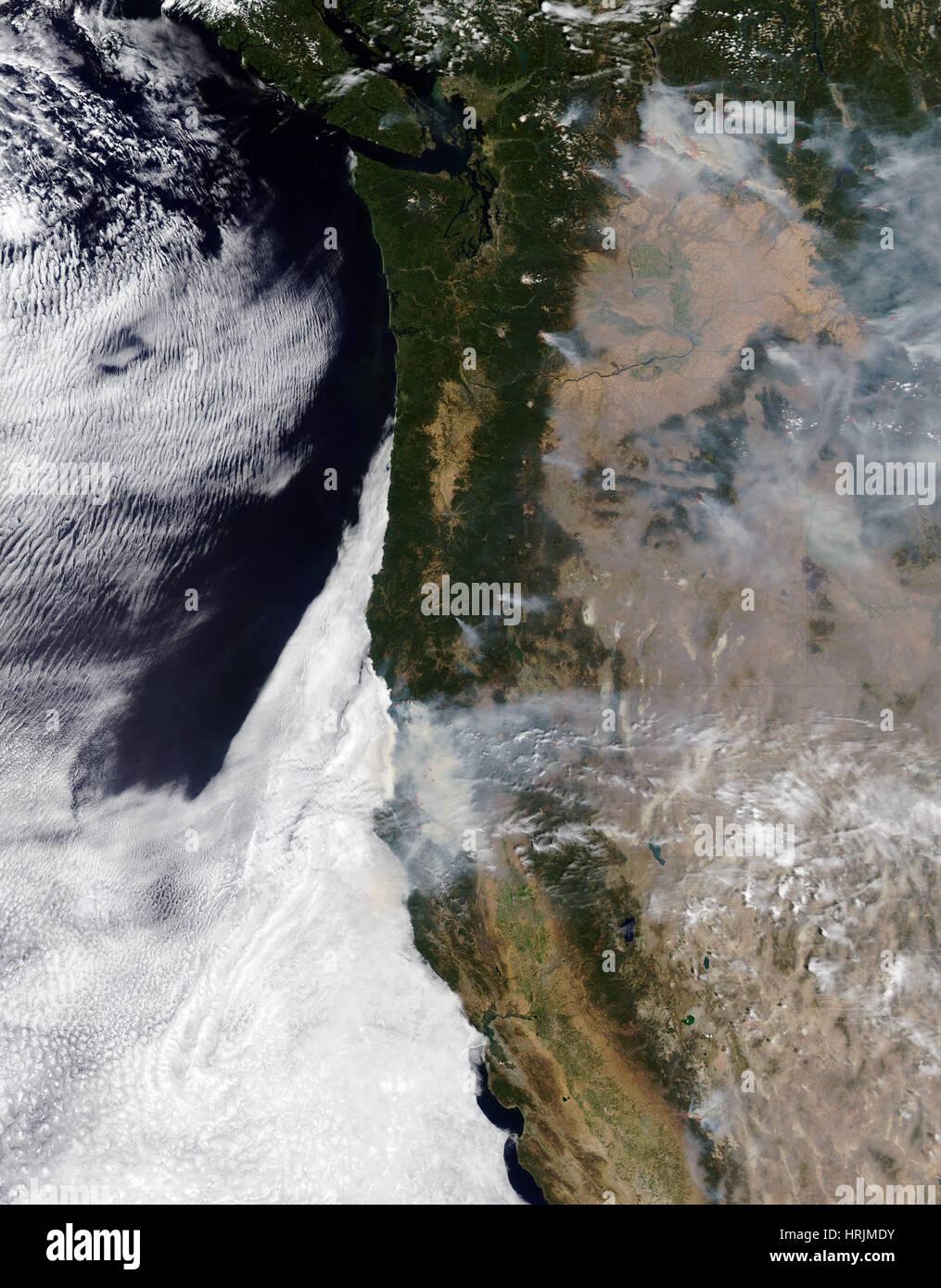 Western di incendi del 2015 Immagini Stock