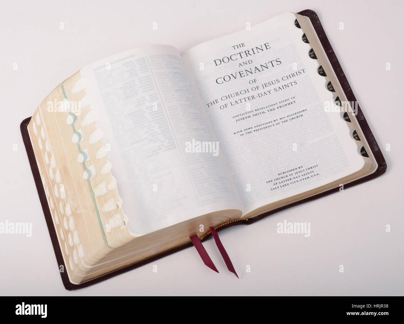 Il Libro di Mormon, Still Life Immagini Stock