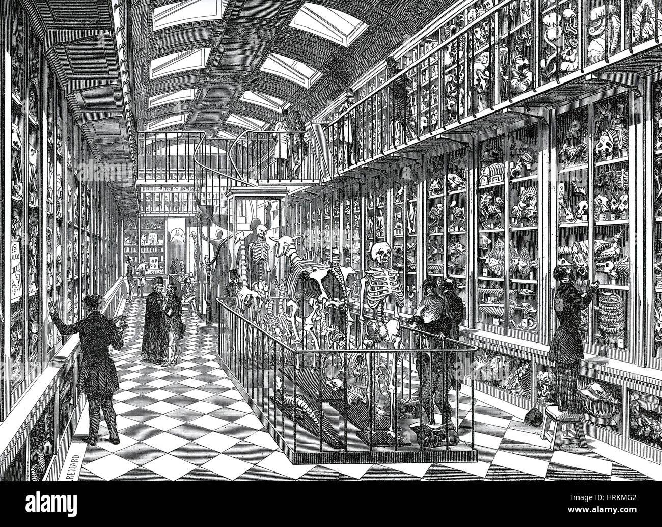 Dittrick Museo di Storia della Medicina Immagini Stock