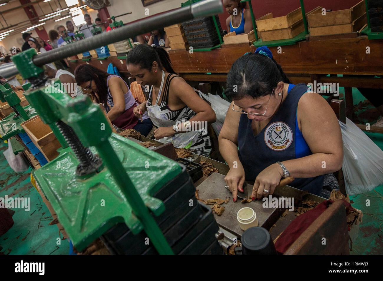 contatti donne guadalajara jalisco donne single dominicana