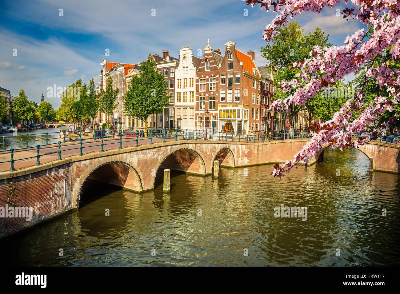 Ponti su canali di Amsterdam a molla Foto Stock