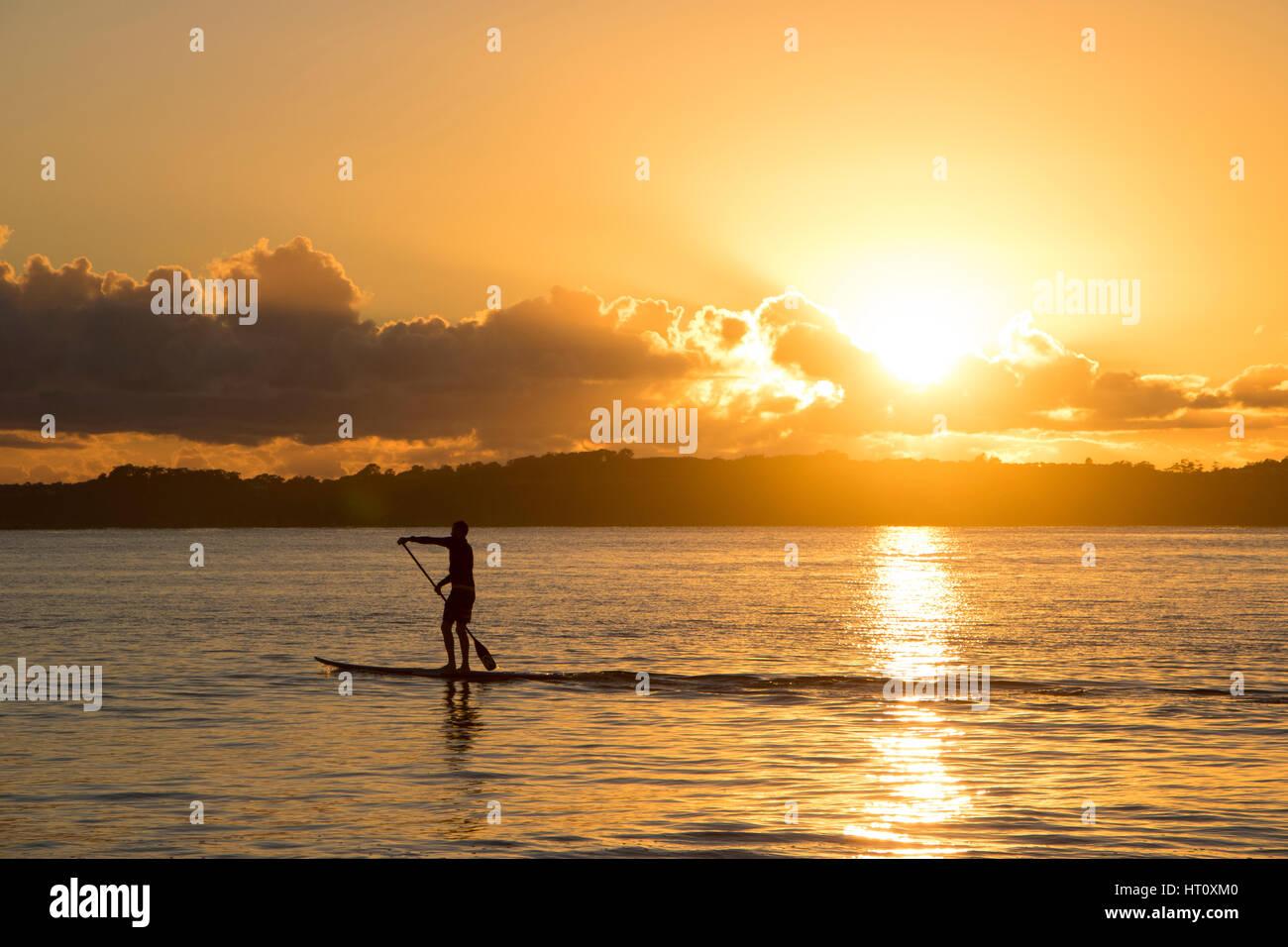 Lonely paddleboard a sunrise, Orewa Nuova Zelanda Immagini Stock