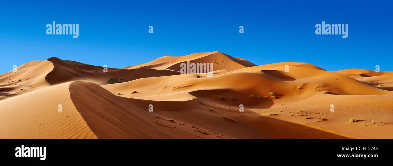 Parabolico Sahara dune di sabbia di Erg Chebbi Marocco Foto Stock