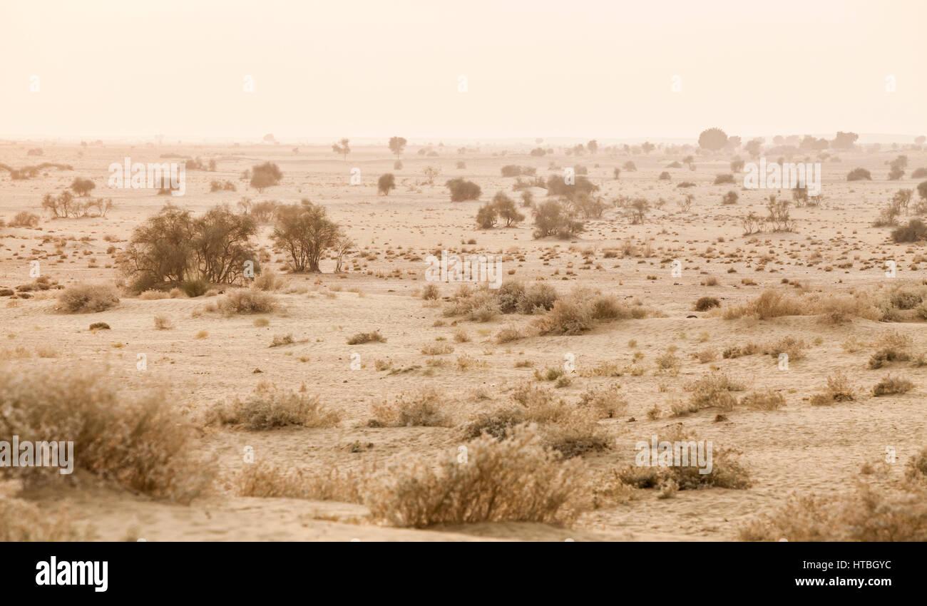 Una vista a guardare il deserto di Thar in Rajasthan Occidentale, India. Immagini Stock
