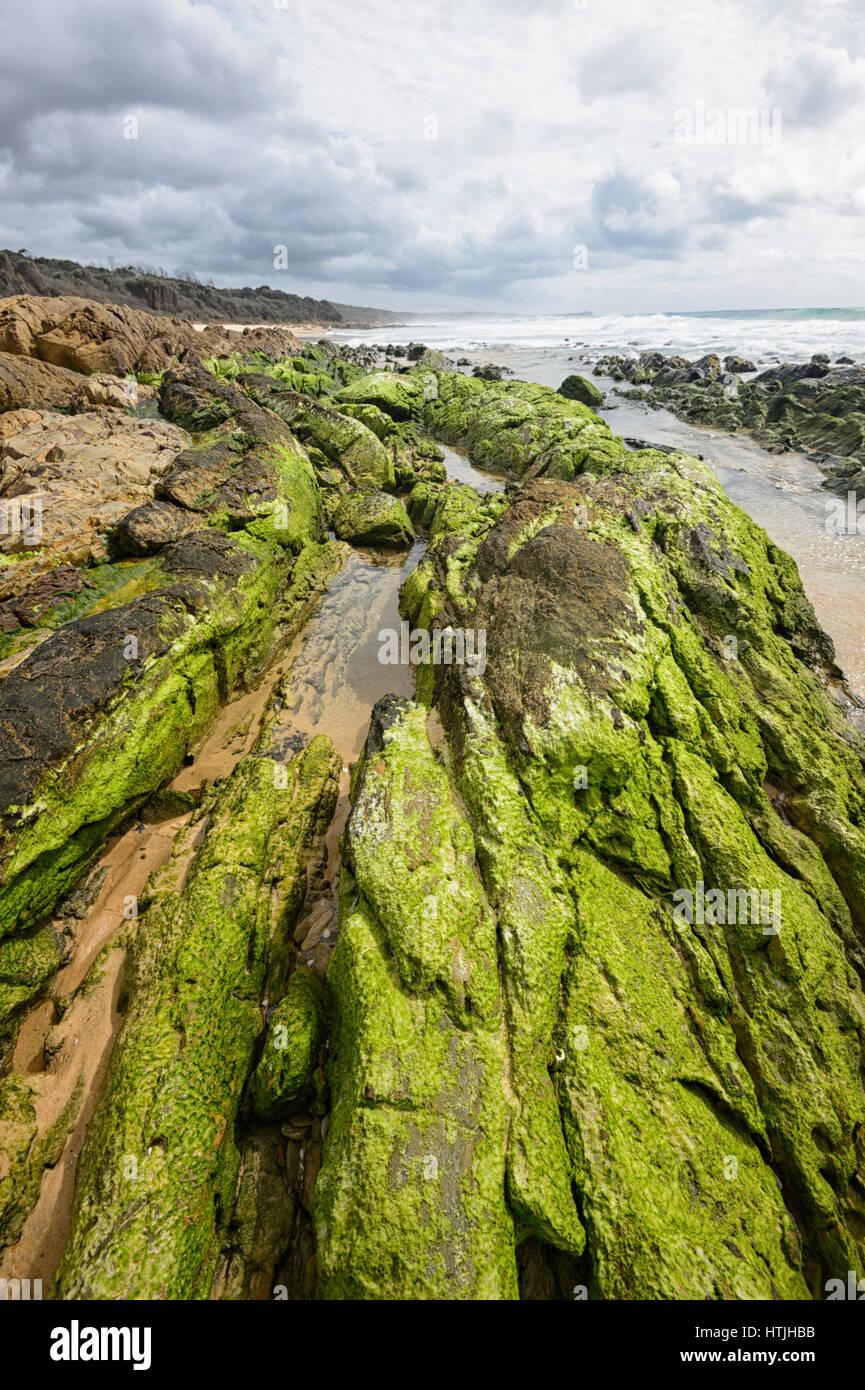 Spiaggia di Brou e le sue incredibili formazioni rocciose coperte di alghe verdi, Zaffiro Costa, Nuovo Galles del Immagini Stock