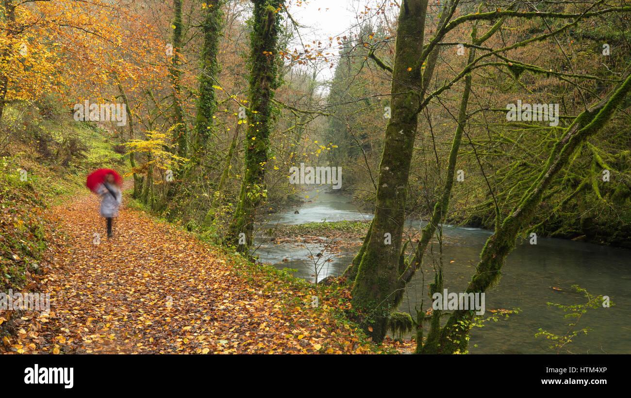 Una donna con ombrello camminando in autunno nella gola du Lison, Nans-Sous-Sainte-Anne, Franche-Comté, Francia Foto Stock