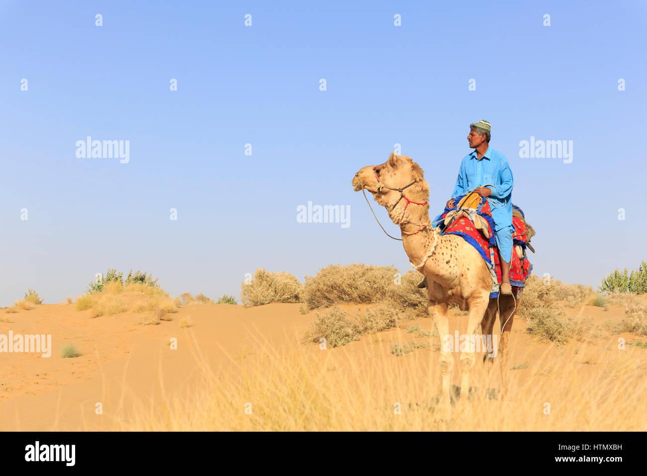 Camel safari nel deserto di Thar, Rajasthan, India Immagini Stock