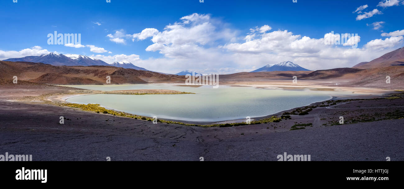 Laguna Honda nel sud Lipez Altiplano reserva Eduardo Avaroa, Bolivia Immagini Stock