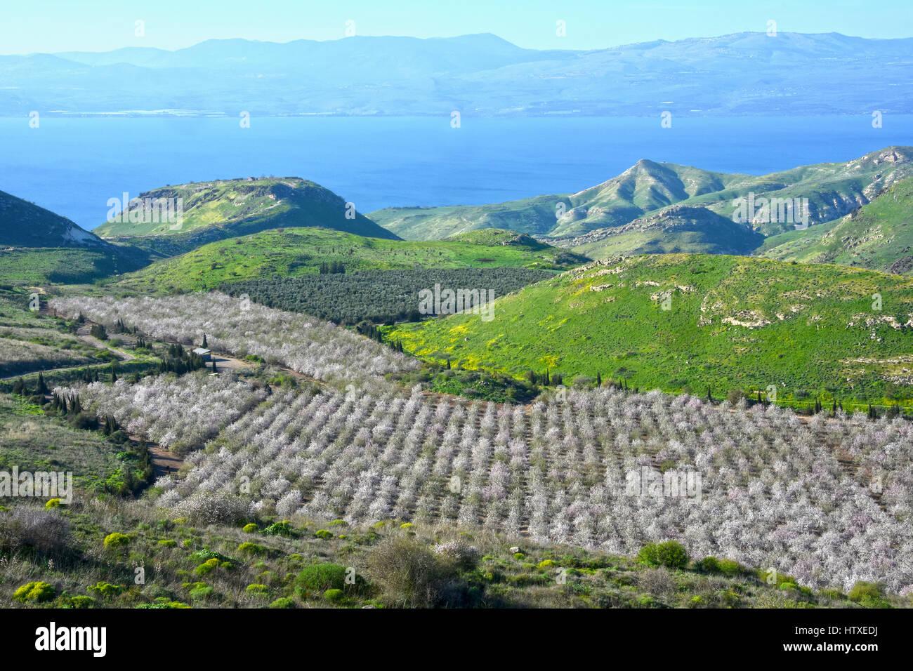 Mare di Galilea da South Golan Immagini Stock