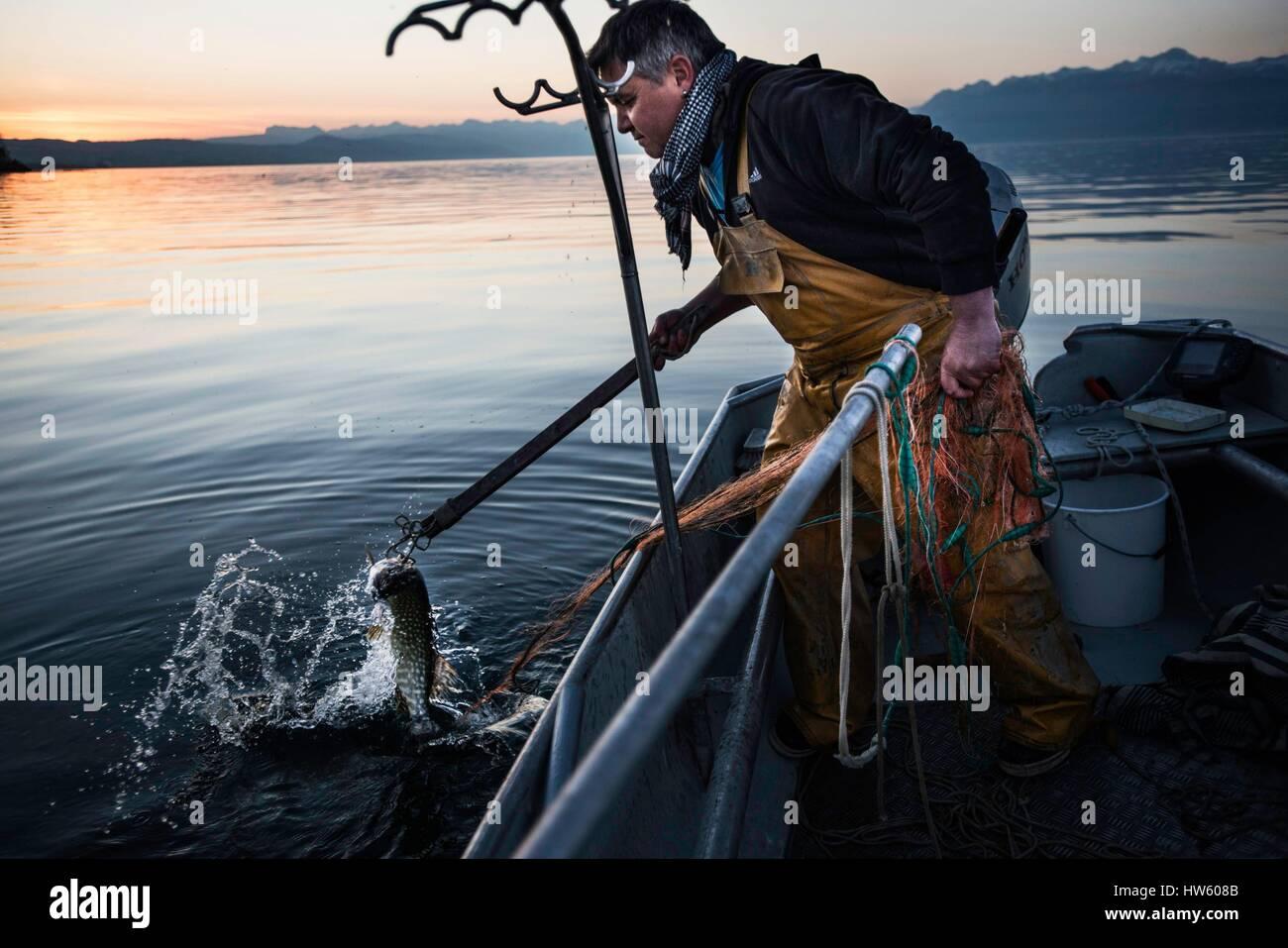 La Svizzera, nel cantone di Vaud, Morges, Manu Torrent, pescatore professionista a Tolochenaz, giorno di apertura Immagini Stock