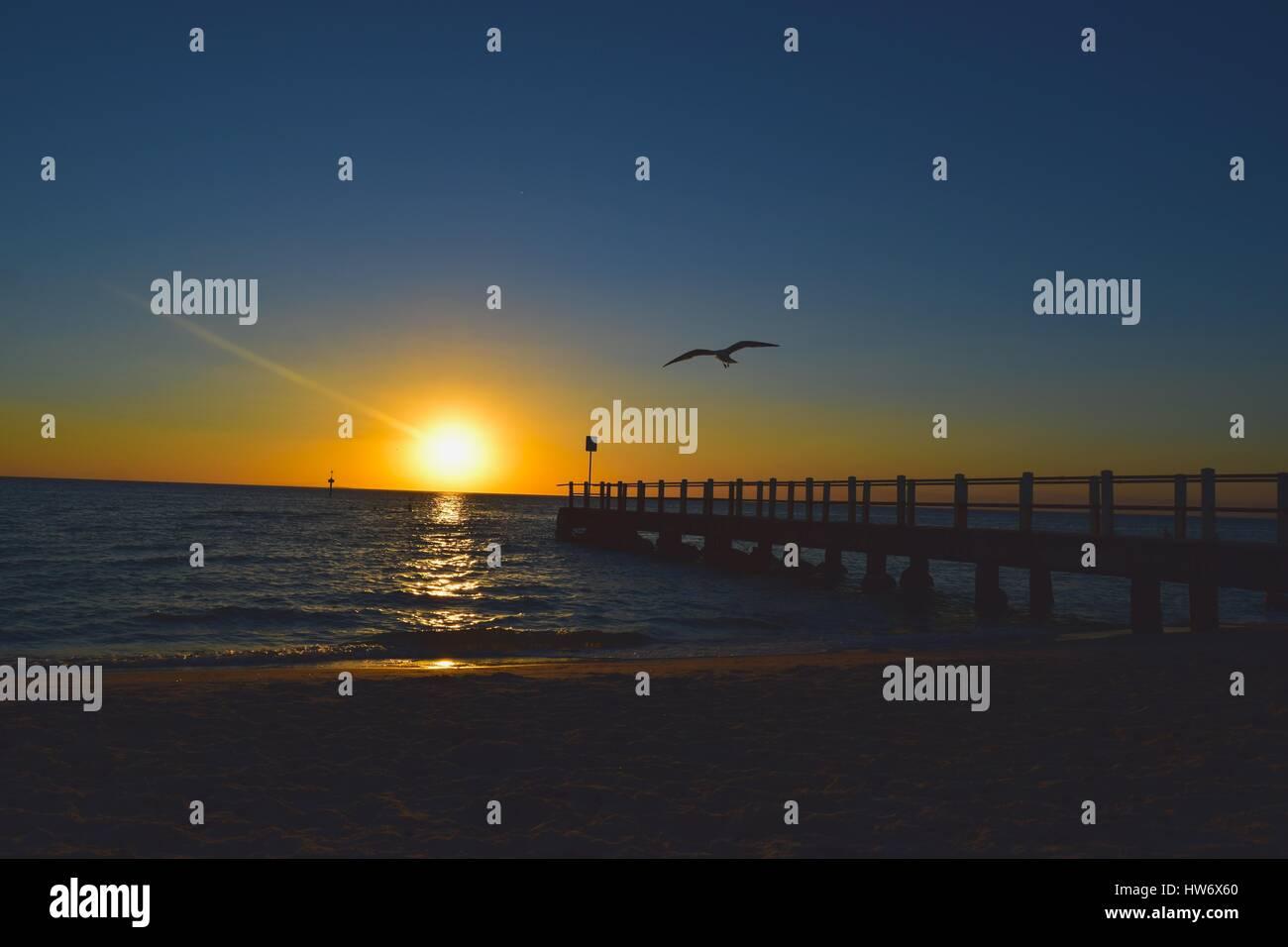 Uno dei molti splendidi tramonti sulla spiaggia di Brighton, su una tranquilla serata. Foto catturate come seagull Immagini Stock