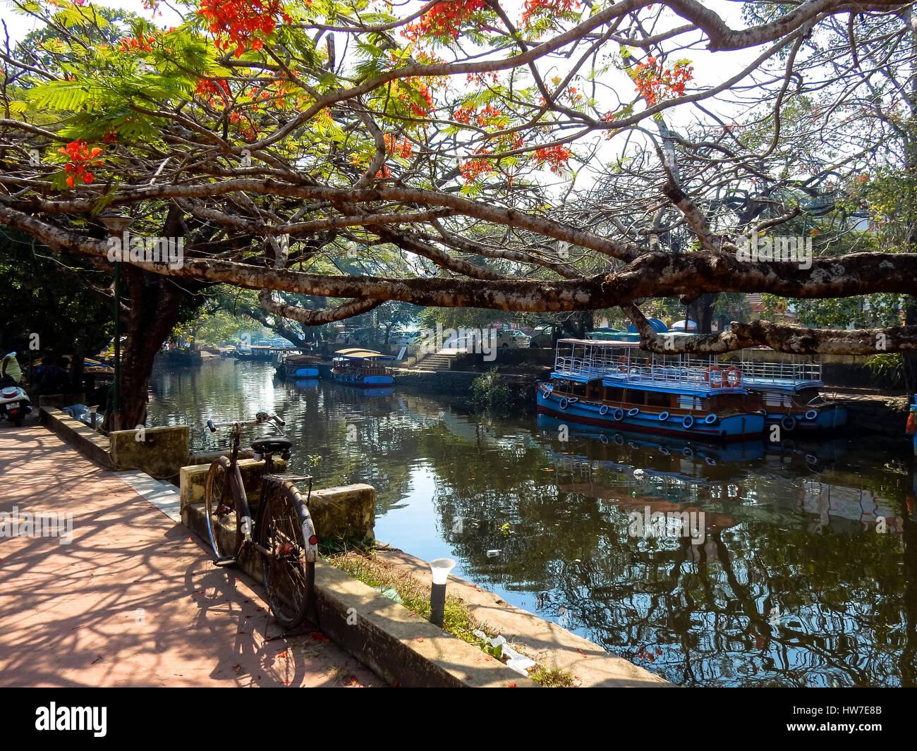 Lagune con houseboat in alleppey ,Kerala, India Immagini Stock
