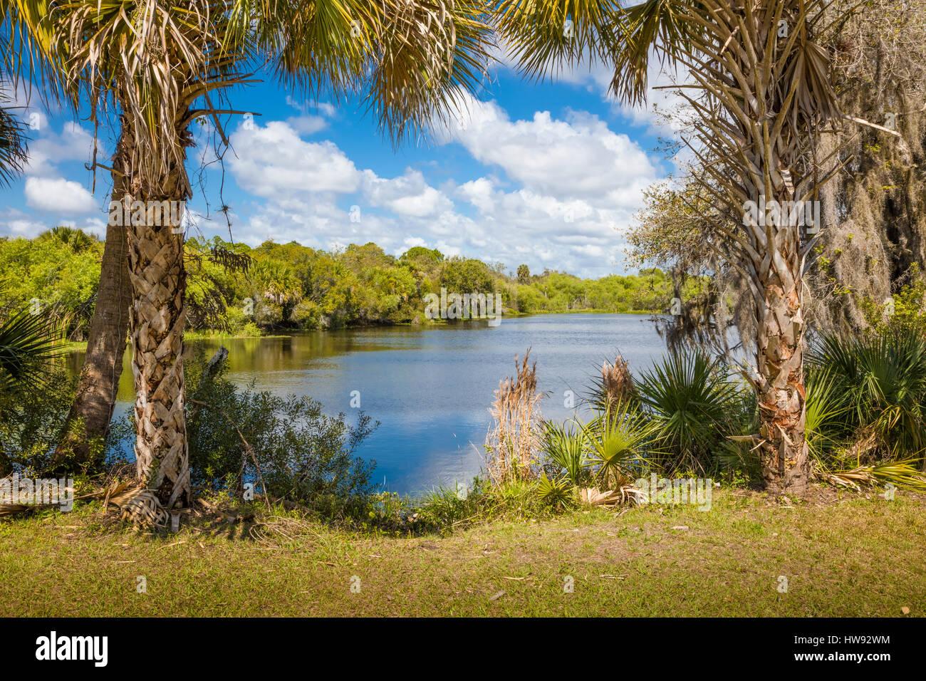 Deer Creek Prairie preservare in florida venezia Foto Stock