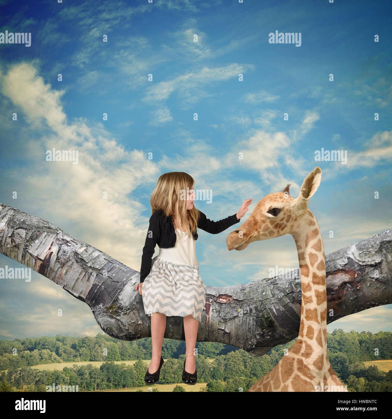 Un bambino piccolo che è seduto su un ramo di albero petting una giraffa fino al cielo per un' immaginazione Immagini Stock