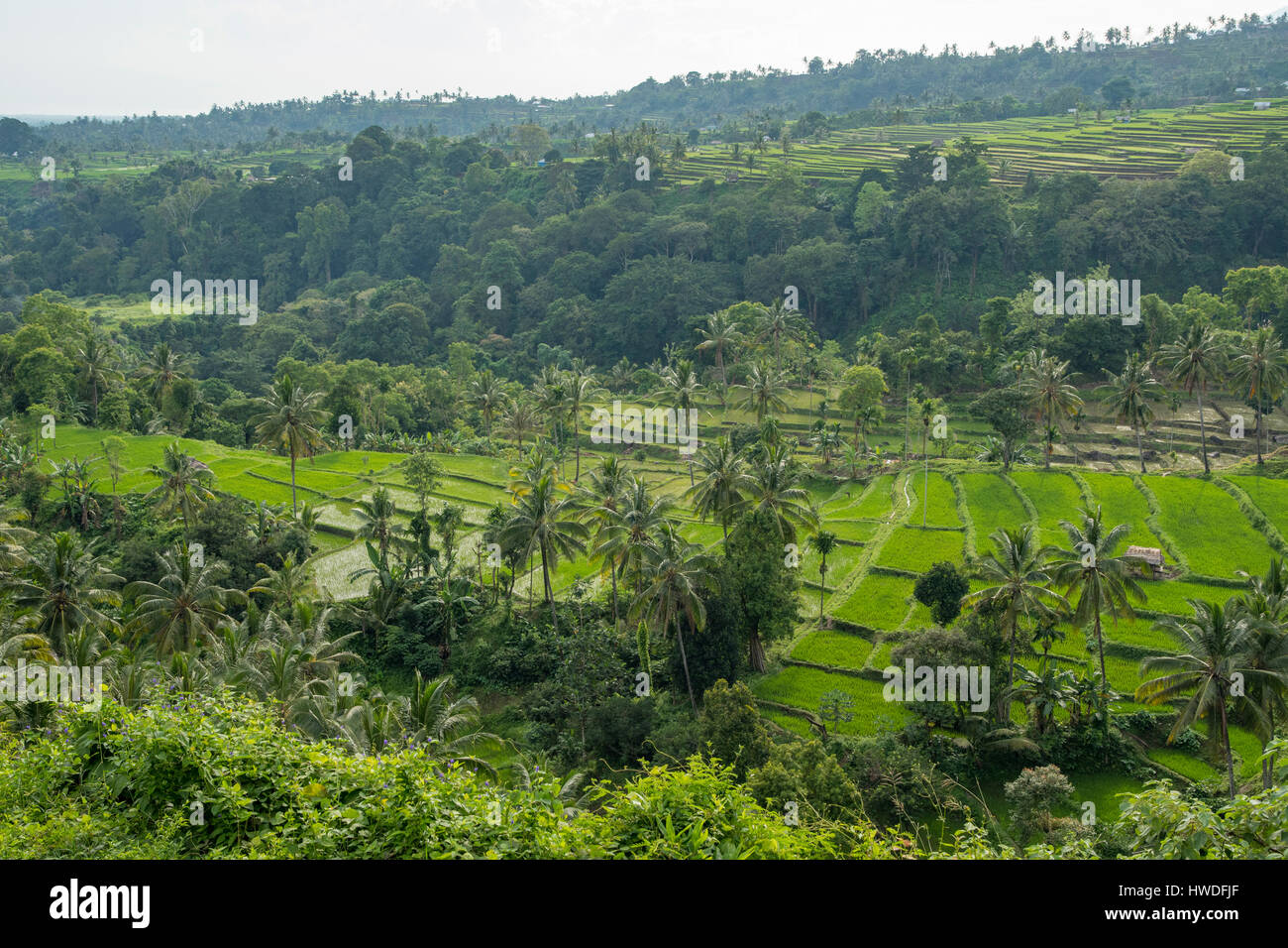Vista da Senaru, Lombok, Indonesia Immagini Stock