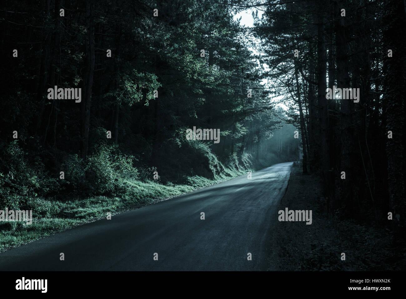 Spooky scura foresta con strada vuota nella luce sfuggente. Emotiva, sfondo gotico, inquietante scenario naturale Immagini Stock