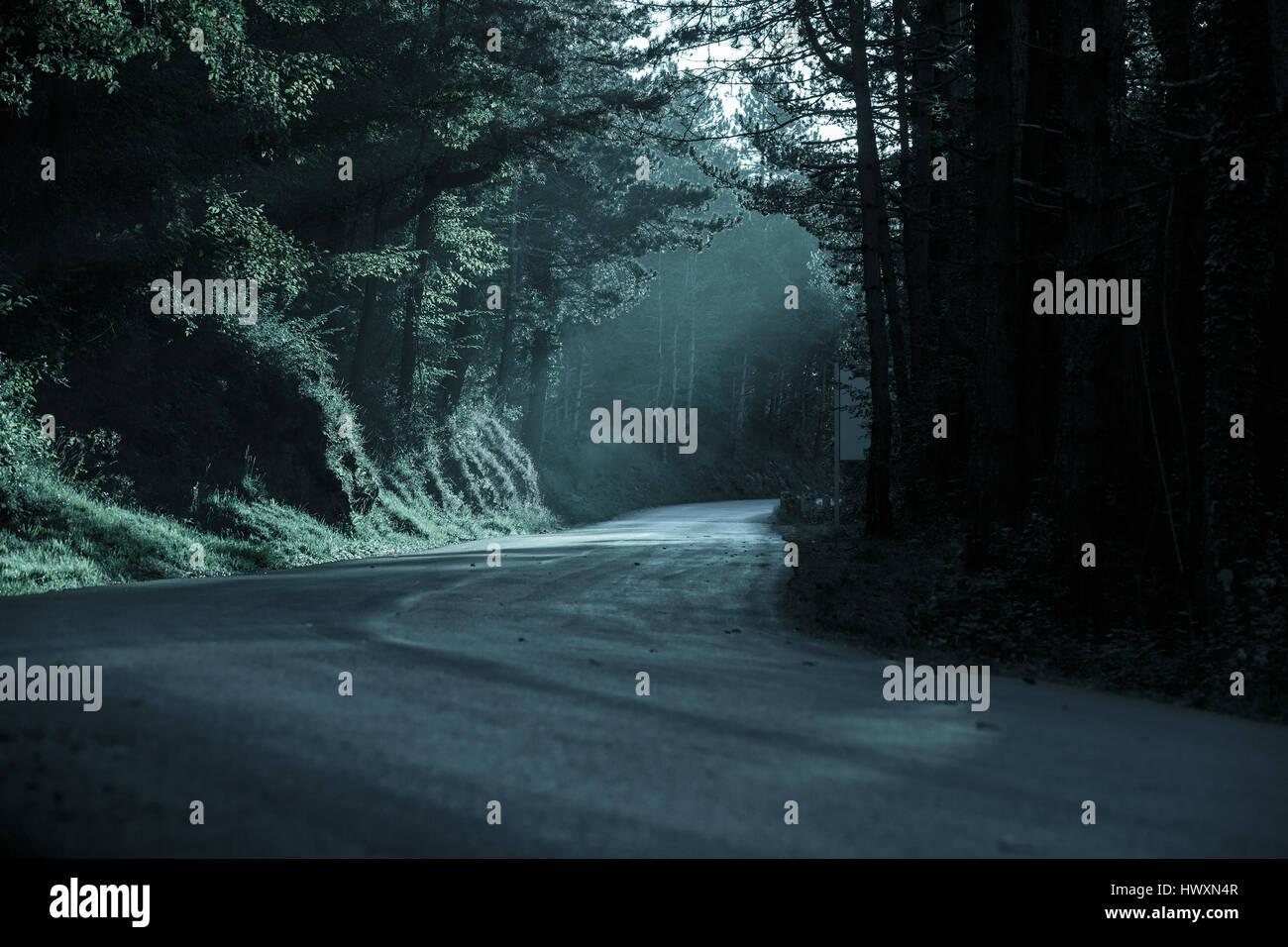 Foresta scura con strada vuota nella luce sfuggente. Emotiva, sfondo gotico, inquietante scenario naturale del concetto. Immagini Stock