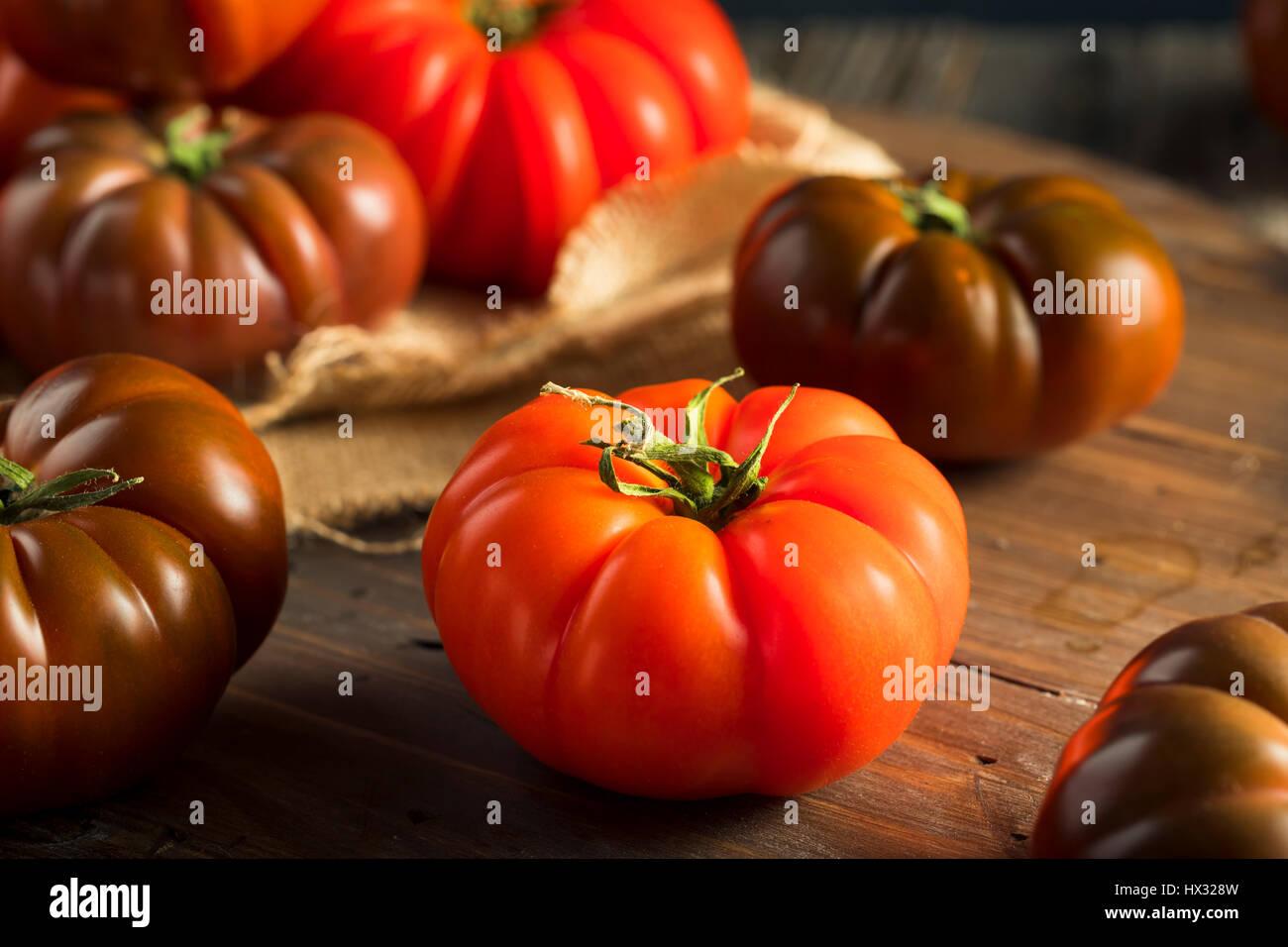 Materie organiche e rosso marrone cimelio di pomodori freschi della vite Immagini Stock